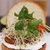 Saaristolaiskalaburgeri ja kurkkusalaatti