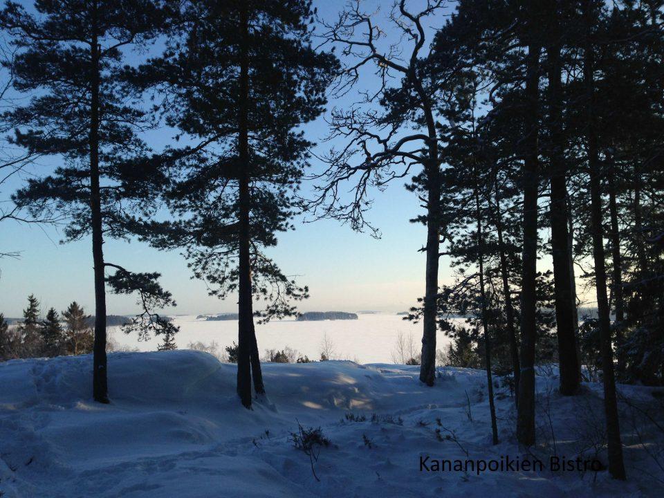 Viikinkikalliot Vartiosaari