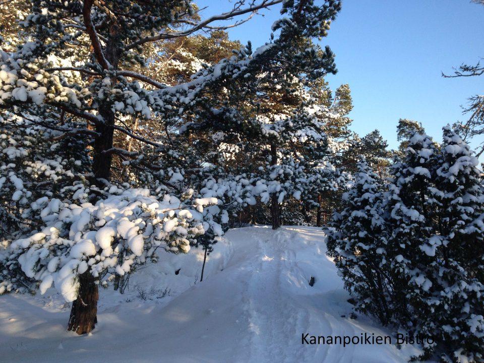 Luminen luontopolku Vartiosaari